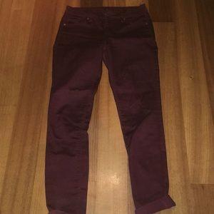 H&M Pants - Maroon pants